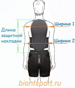 советы по выбору защиты спины